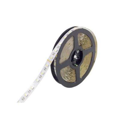 Светодиодная лента RGBW 4/1 SMD 5050 12V 60 д.м. IP20 PROFI (цена 1м)
